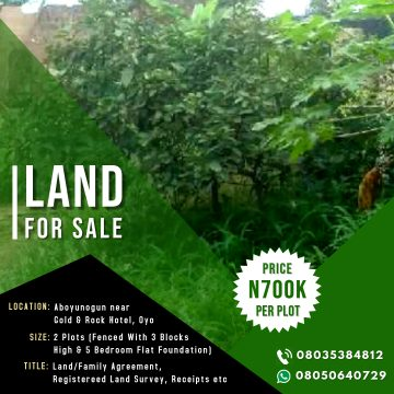 Hot Deal! 2 Plot Of Land With Foundation For Sale At Oyo